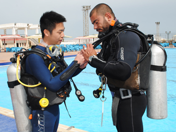 Which divesuit in which month in Hurghada