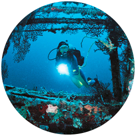 Wreck diving in Hurghada