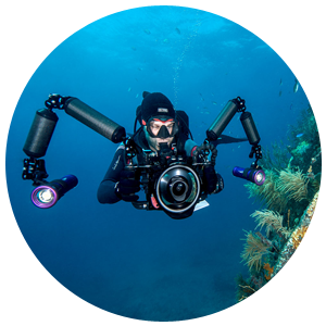 PADI Underwater Videographer Specialty