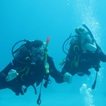 dive hurghada-diving-dive-padi-open water-underwater-course-red sea-hurghada-egypt-photo