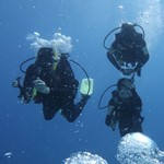 dive hurghada-diving-dive-buddy-friend-underwater-hurghada-egypt-red sea-sea-fun