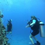 dive hurghada-diving-dive-hurghada-egypt-wreck-red sea-abu nuhas