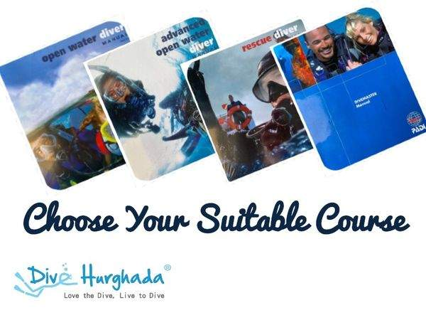 3 Things to consider when you choose diving courses in Hurghada